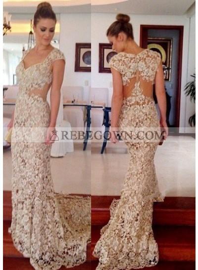 Queen Anne Zipper Natural Waist Mermaid Lace Prom Dresses